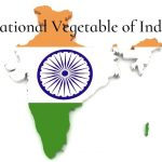 What is the National Vegetable of India?